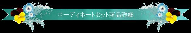 コーディネートセット商品詳細